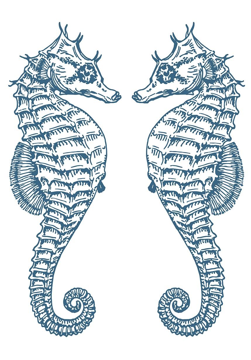 Afbeelding van 2 Zeepaardjes Zee Kunst