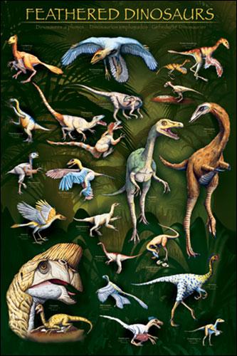 Afbeelding van Dinosauriërs Met Vleugels Poster 61x91.5cm Dieren Posters